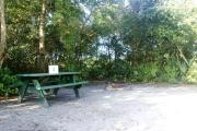 Campsite #3 at Blue Spring State Park with a picnic table and fire ring.