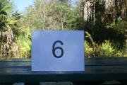 ADA accessible campsite #6 at Blue Spring State Park showing number on picnic table.