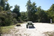 Campsite #19 at Blue Spring State Park showing picnic table and fire ring.