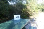 Campsite #20 at Blue Spring State Park showing site number on picnic table.