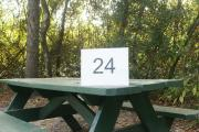 Campsite #24 at Blue Spring State Park showing picnic table.