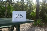 Campsite #25 at Blue Spring State Park showing picnic table.
