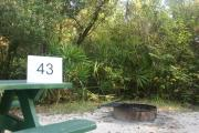 Campsite #43 at Blue Spring State Park showing picnic table.