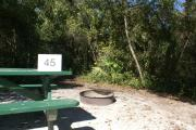 Campsite #45 at Blue Spring State Park showing picnic table and fire ring.
