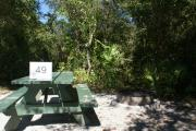 Campsite #49 at Blue Spring State Park showing picnic table and fire ring.