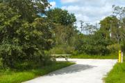 A 45 feet long paved back up campsite surrounded with lush vegetation. The sitting area is located to the left and has a wooden picnic table and a cast-iron barbeque stand. Water and electric hook-ups are on the right hand side of the site.