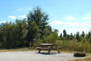 A gravel sitting area with a wooden picnic table, a cast-iron fire circle, trees, and low growing vegetation separating it from the neighboring site.