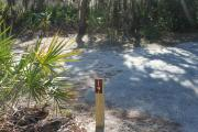 Looking at campsite marker #19;site mostly sunny in afternoon