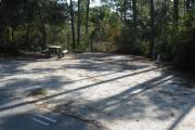 A view of the campsite with a shell/sand base and mostly shade.