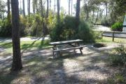View of a picnic table and fire ring in partial shade.