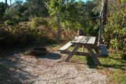 View of a picnic table, clothesline posts and fire ring in partial shade.