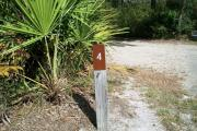 Close up of a brown campsite marker number 4. There are grass and palmetto bushes on each side creating a border. This is a 100 foot pull through site which lies between the circle drive.