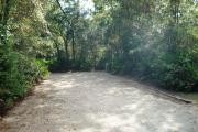 This picture of campsite number 9 is taken from the circle drive looking toward the back. You can see the electrical and water hookups to the right and not seen but present are the picnic table and fire ring/grill to the left. This site is lined with medium sized trees and palmetto shrubs and is mostly shaded.