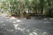 This picture is a shot of campsite 16 from the back of the campsite angling to the right. Towards the right of the picture there is a wooden picnic table and a ground fire ring/grill. The background shows shrubby oaks, palmettos and a pine.