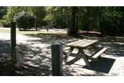The picnic table can be moved over with the fire ring into the shaded area or left where it is. The electrical and water connections are to the left in this picture which is taken from the back looking more toward the circle drive. There are several large oak trees for shade. This site is close to the adjoining site and has little border between the two sites, which makes this site really good if you have friends camping with you and you wish to have joining sites.