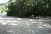 This picture as viewed from the back of the site facing the front circle drive shows the designated picnic area but the table can be moved about the site for convenience. The large mix of vegetation provides a rather private location for your camping. This site also abuts the parks stand of natural pine timber.