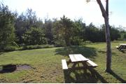 Photo: 008, PRIM. Cabin #8 at Oleta River has a fire ring and a picnic table.