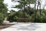 Picnic table and fire ring in ADA-Accessible site with concrete pad. RVs only.