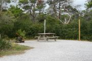 Campsite with picnic table, fire ring and clothes lines poles.