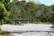 Gravel based pull-through site with vegetation for privacy with picnic table.