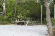 Picnic table and fire ring with clothesline in campsite.