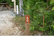Close-up photo of the brown with white site number sign on a wooden post.