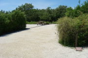 Photo: 007, View of gravel campsite with picnic table and grill, bushes in background.