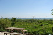 Photo: 011, View of gravel campsite with picnic table and grill, Atlantic Ocean and bushes in background.