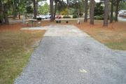 A view of RV site four at Topsail Hill Preserve State Park looking towards the back of the site.  A picnic table is on a concrete pad to the left of the site and utility hook up boxes are to the right.