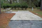 A view of RV site twelve at Topsail Hill Preserve State Park looking towards the back of the site.  A picnic table is next to a concrete pad to the left of the site and utility hook up boxes are to the right of the site.