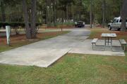 A view of RV site twenty-five at Topsail Hill Preserve State Park looking towards the front of the site.  A picnic table is on a concrete pad to the right of the site and utility hooks ups are to the left of the site.