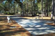 A view of RV site thirty-three at Topsail Hill Preserve State Park looking towards the front of the site.  A picnic table is on a concrete pad to the right of the site and the utility hook ups are to the left.