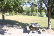 In campsite #6, looking towards Lake Alafia - Ground is scattered with green grass and grey soil, picnic table is nestled in the partial shade is of a small oak tree.