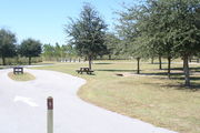 View of campsite #11 from site entry – This is a pull-through campsite, with an asphalt pad for camping units.  On the left of the asphalt pad is the electric hookup and water spigot, surrounded by a protective wooden enclosure.  On the right are a picnic table and a circular ground grill.  Along back edge of campsite are small oak trees, providing patchy shade.