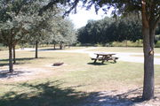 At the back of campsite #11, looking towards campground road - Ground is scattered with green grass and grey soil.  Partial shade is provided by small oak trees.  Picnic table and circular ground grill is visible.