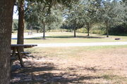 Looking from the side of campsite #12 – Ground cover is green and brown grass and grey soil.  Intermittent shade is provided by small oak trees.