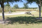 At the back of campsite #14, looking towards campground road - Ground is scattered with green grass.  Partial shade is provided by small oak trees.  Picnic table, circular ground grill are visible in far right side.