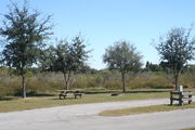Looking at campsite #16 from opposite side of road – Ground cover is green and brown grass, with patches of grey soil.  Small oak trees providing sporadic shade near the back of site.  Far right of the photo is electric hookup and water spigot.  Picnic table and circular ground grill are visible.