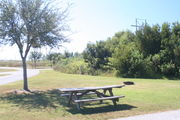 From the side of campsite #21 - Ground is scattered with green and brown grass, limited shade is provided by small oak trees.  Picnic table and circular ground grill are visible in center of photo.