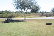 At the back of campsite #21 looking towards road – Ground cover is green and brown grass.  Far left of photo is a picnic table and in the far right of photo is a circular ground grill.