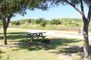 At the back of campsite #22, looking towards campground road - Ground cover is green and brown grass, with patches of grey soil.  Partial shade is provided by small oak trees.  Picnic table, circular ground grill are visible in the center of photo.