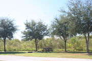Looking at campsite #26 from opposite side of road – Ground cover is green and brown grass.  Small oak trees providing sparse shade near the back of site.  In center of photo are a picnic table and circular ground grill.