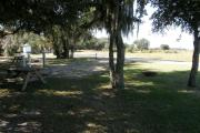 From the shady picnic table, the horse paddocks and overflow parking areas are visible.  The Clivis (composting toilet) is a short walk away.