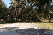 Campsite 24 has a wide vehicle pad and entrance. Spanish moss drapes over the medium sized live oak trees. Deer and turkey regularly cross through this site.