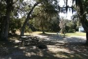From the shade laden picnic table, deer and turkey are readily seen. Bay trees that have been impacted by an invasive species are also visible.