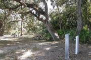 Several large oak trees provide adequate shade for the entire campsite.