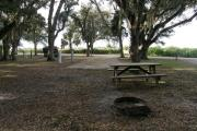 From the picnic table and fire ring, the horse paddocks can be seen through the traffic pattern island.