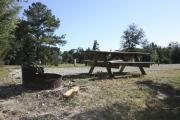 Photo: 008, SANTOS CAMPGROUND. View of campsite with picnic table with fire ring.